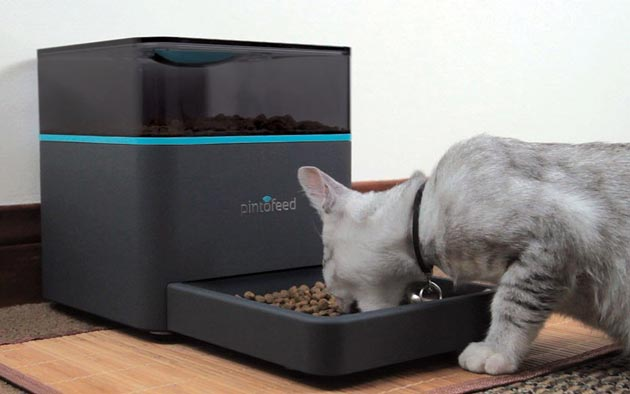 lamudi Pet-Feeder