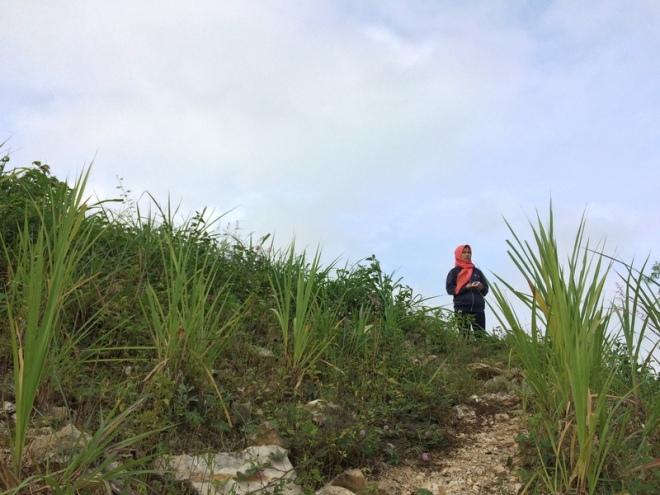 Mendaki ke Puncak Bukit Telaga Biru Candisari Semin Gunungkidul