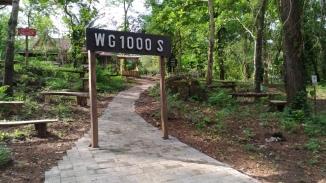 wanagama-edu-forest-0010