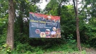 wanagama-edu-forest-002